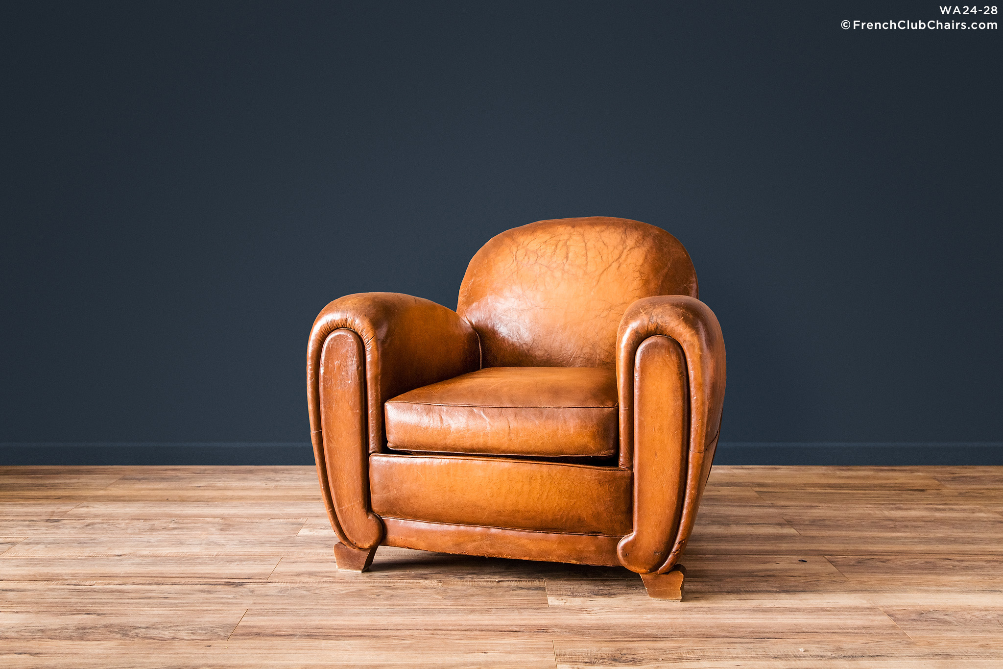WA24 28_SILVIECINEMASOLO_R V01 Williams Antiks Leather French Club Chair  Wa_fcccom